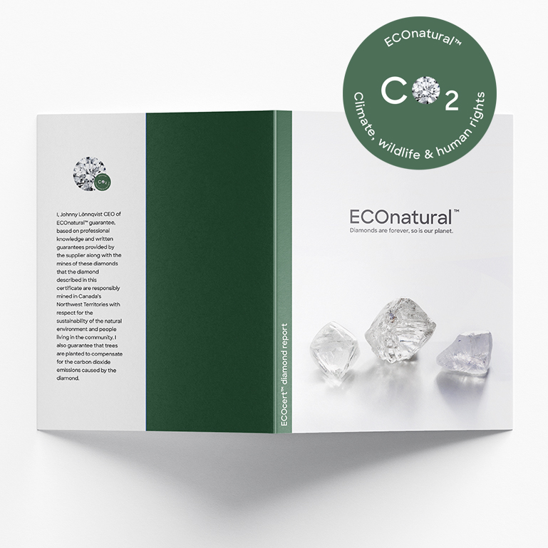 eco diamanter